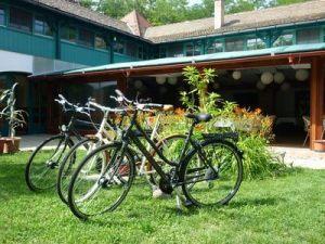 Kerékpártúra a szigeten és a Dunakanyarban